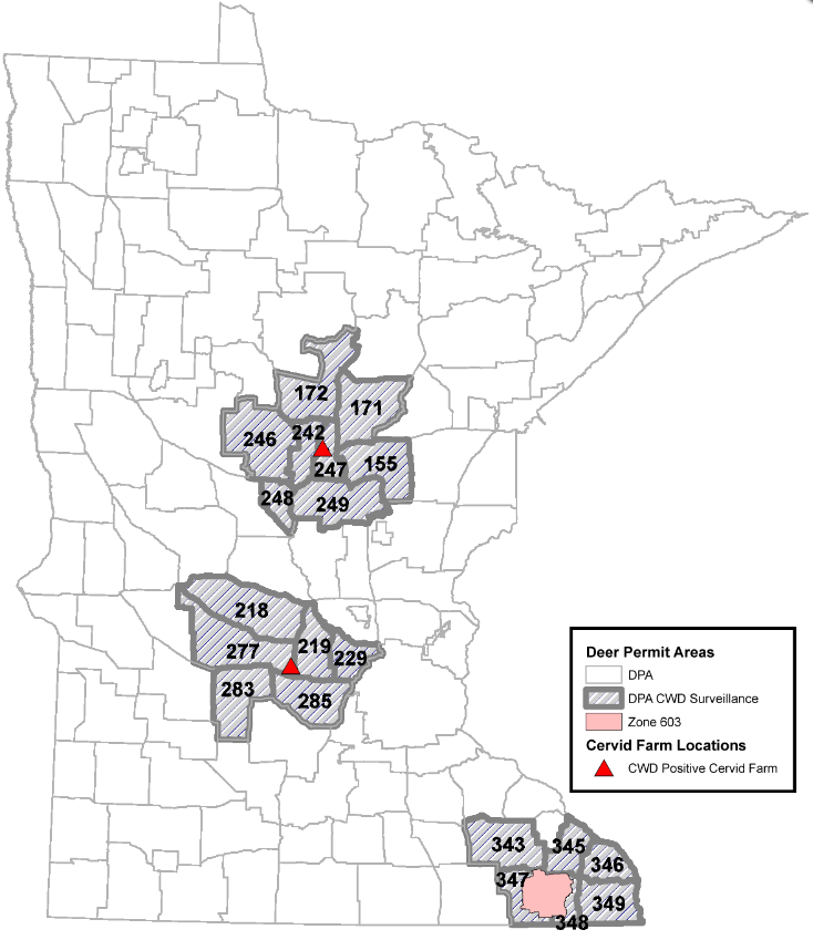 Minnesota expands deer feeding ban amid new chronic wasting cases