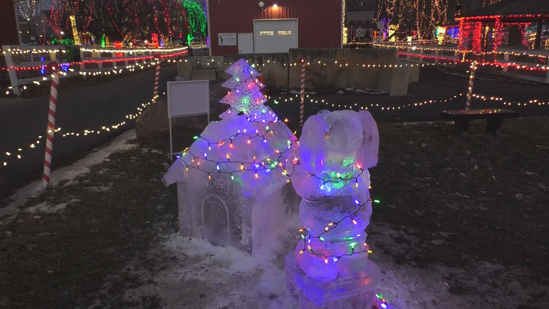A Husband And Wife Duo Won Kiwanis Holiday Lightsu0027, First Ever Ice  Sculpting Competition This Weekend, With Their Snoopy Sculpture.